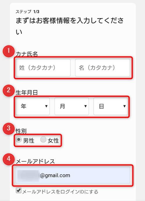 カナ氏名、生年月日、性別、メールアドレス入力欄が表示