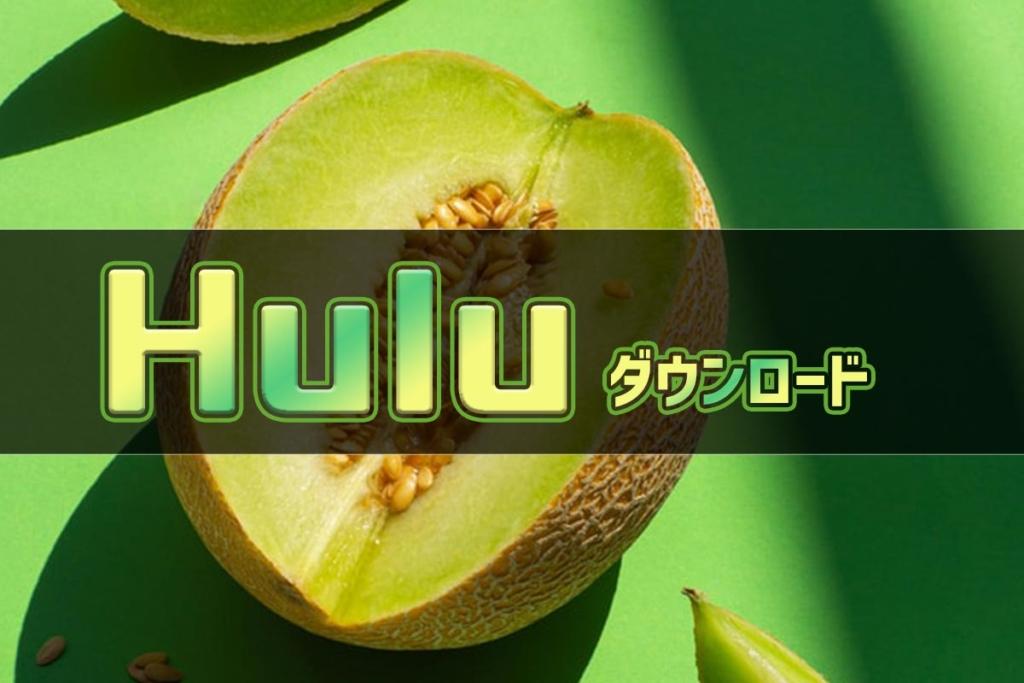 Hulu(フールー)のダウンロード機能とは?出来ない場合やPC版も解説【2020年版】