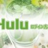 Hulu(フールー)のログイン方法、ログインできない場合の方法も解説【2020年版】