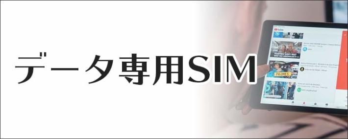 データ専門SIM