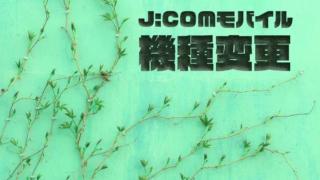 【2020年版】JCOMモバイルの機種変更を解説!端末割やおすすめ端末も紹介