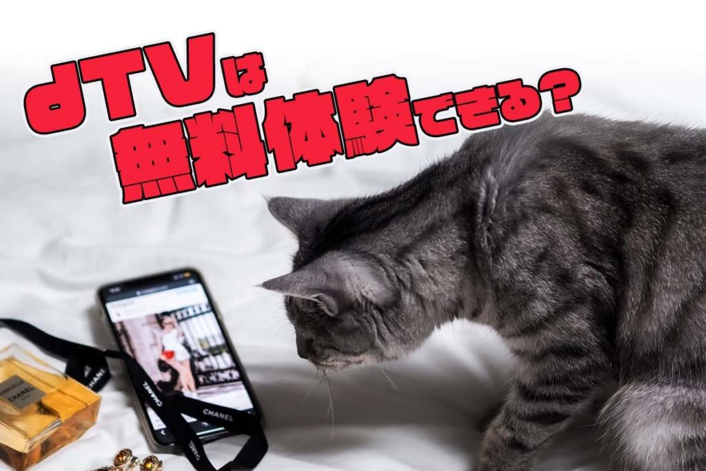 dTV無料トライアルを解説